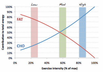 The intensity fuel relationship